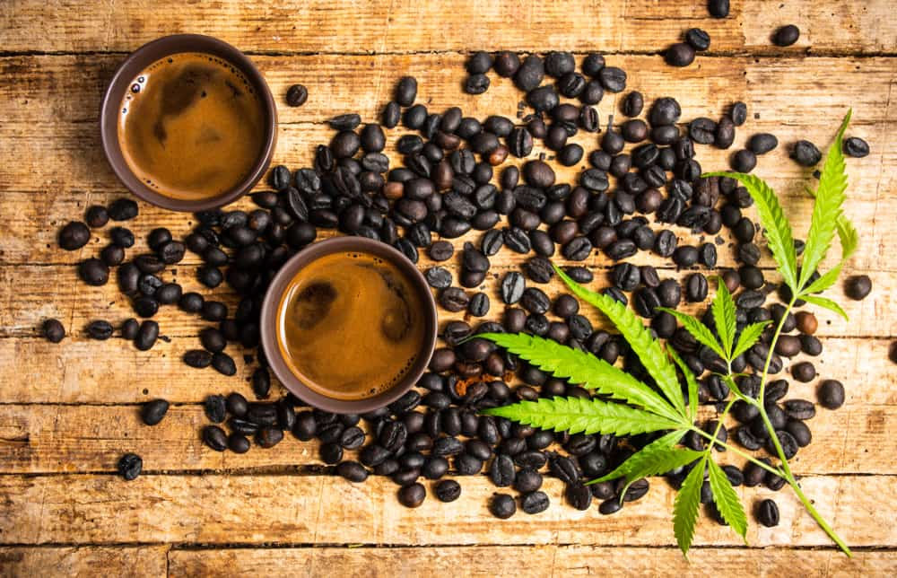 Cannabis and Coffee- A Tempting Combo To Try Today!